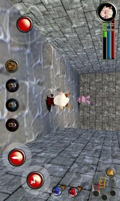 地下城与骑士(Dungeon&Knight Plus)截图4