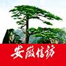 安徽手机信访平台官网版v1.2