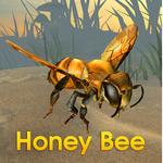 蜜蜂模拟器最新版(动物模拟)Honey Bee Simulator