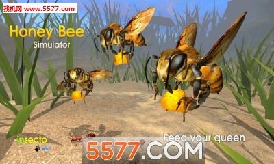 蜜蜂模拟器免费下载|蜜蜂模拟器最新版(动物模拟)