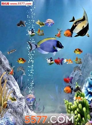 海底总动员2手机壁纸主题