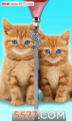 猫咪拉链锁屏(可爱的锁屏壁纸)