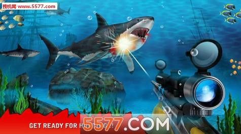捕获鲨鱼(猎杀鲨鱼)shark hunting