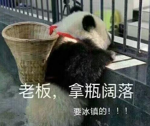 熊猫买阔落表情下载 表情来瓶冰阔落表情收下心心老板包图片