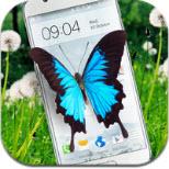 手机屏幕养蝴蝶软件v1.6.0