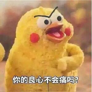 鹦鹉兄弟图片   我们仙女不需要良心脆皮鸡表情包图片