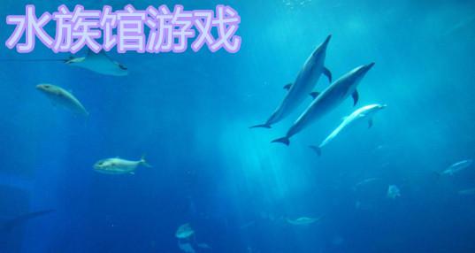 水族馆游戏