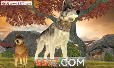 野狼冒险模拟器Wild Wolf Adventure Simulator(野狼生存)截图0