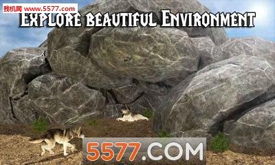 野狼冒险模拟器Wild Wolf Adventure Simulator(野狼生存)截图1