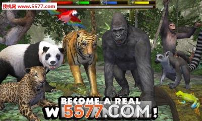 1修改版  终极的丛林模拟器修改版为大家提供下载,这是一款模拟365棋牌娱乐城_365棋牌唯一官网活动_365棋牌电脑下载手机版下载