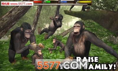终极的丛林模拟器(野生动物)