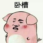 猪的套路表情包分享展示