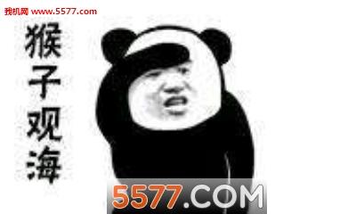 降龙十八掌熊猫功夫大全表情包图片