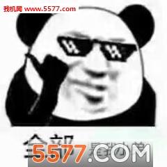 熊猫头斗表情情下载1|熊猫表情包男朋友套路的最新头斗图图表_55图片