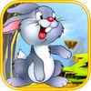 兔子酷跑苹果版