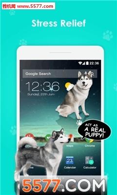 idog手机宠物截图1