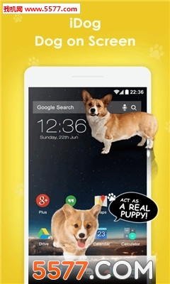 idog手机宠物截图2