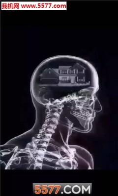 抖音脑子ct图里面全是你表情包图片