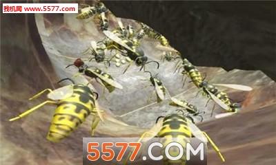 黄蜂巢模拟器3D无限金币破解版截图1