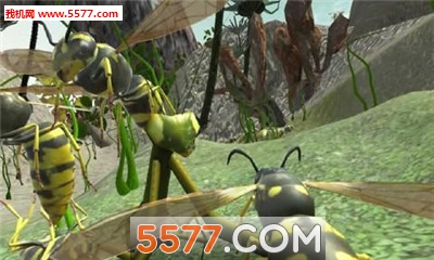 黄蜂巢模拟器3D无限金币破解版截图2