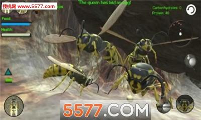黄蜂巢模拟器3D无限金币破解版截图3