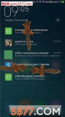 松鼠在屏幕上爬手机版截图0