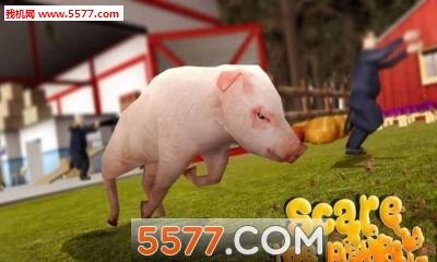 猪的一生命运游戏截图2