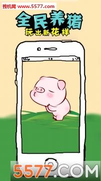 养猪赚钱游戏截图0