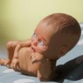 婴儿模拟器手机游戏