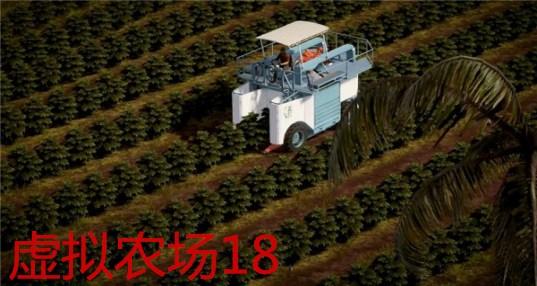 虚拟农场18