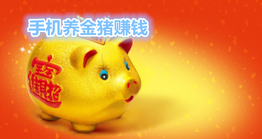 养金猪赚钱