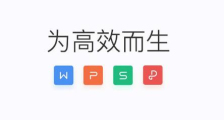 wps office去�V告版