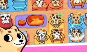 金谷宠物世界安卓版