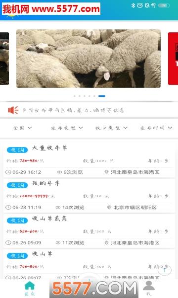 青青草原安卓版截图4