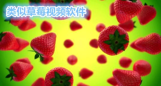 草莓��l