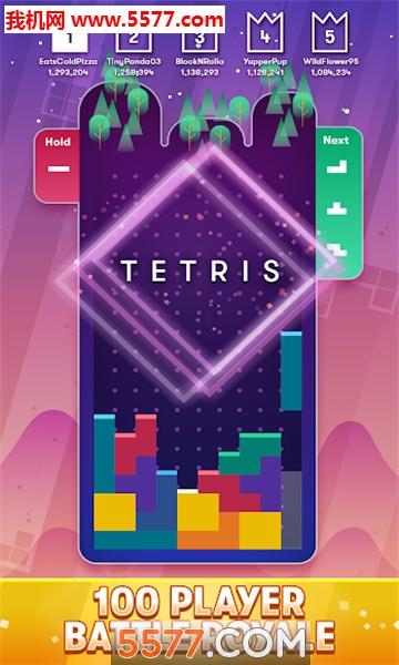 tetris royale游戏(俄罗斯方块大逃杀)截图0