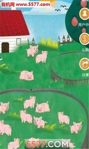 星浩区块生肖猪赚钱官网版截图2