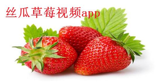 �z瓜草莓��lapp
