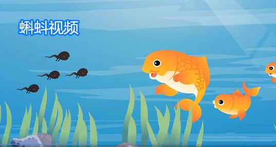 蝌蚪��l