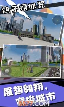 鸽子模拟器2020游戏