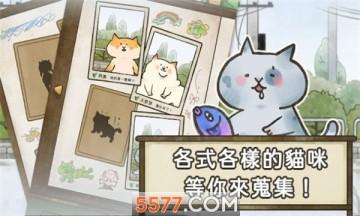 猫箱物语安卓版