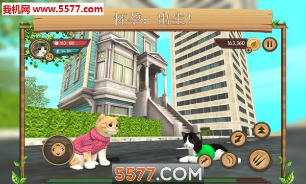 在线模拟猫无限金币中文版截图2