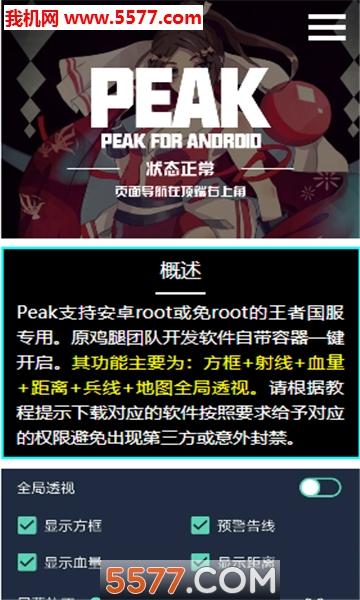 王者peak辅助软件截图0