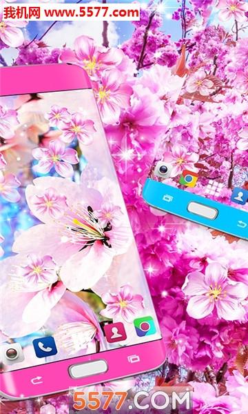 樱花花动态壁纸高清壁纸最新版截图0