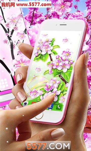 樱花花动态壁纸高清壁纸最新版截图1