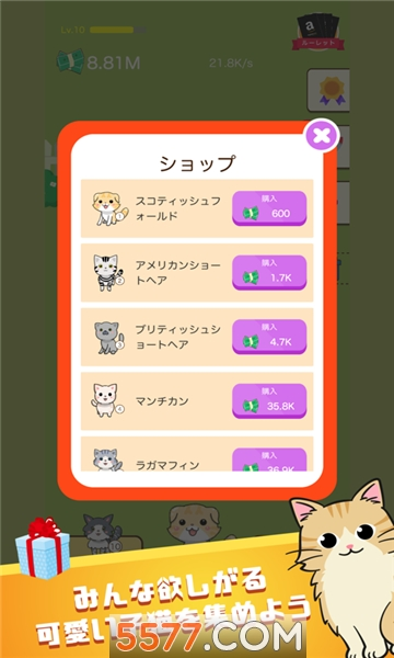 合成小猫咪红包版截图1
