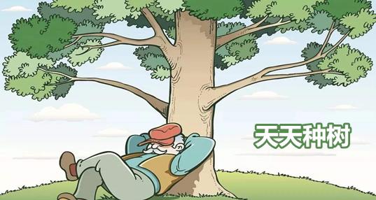 天天种树赚钱